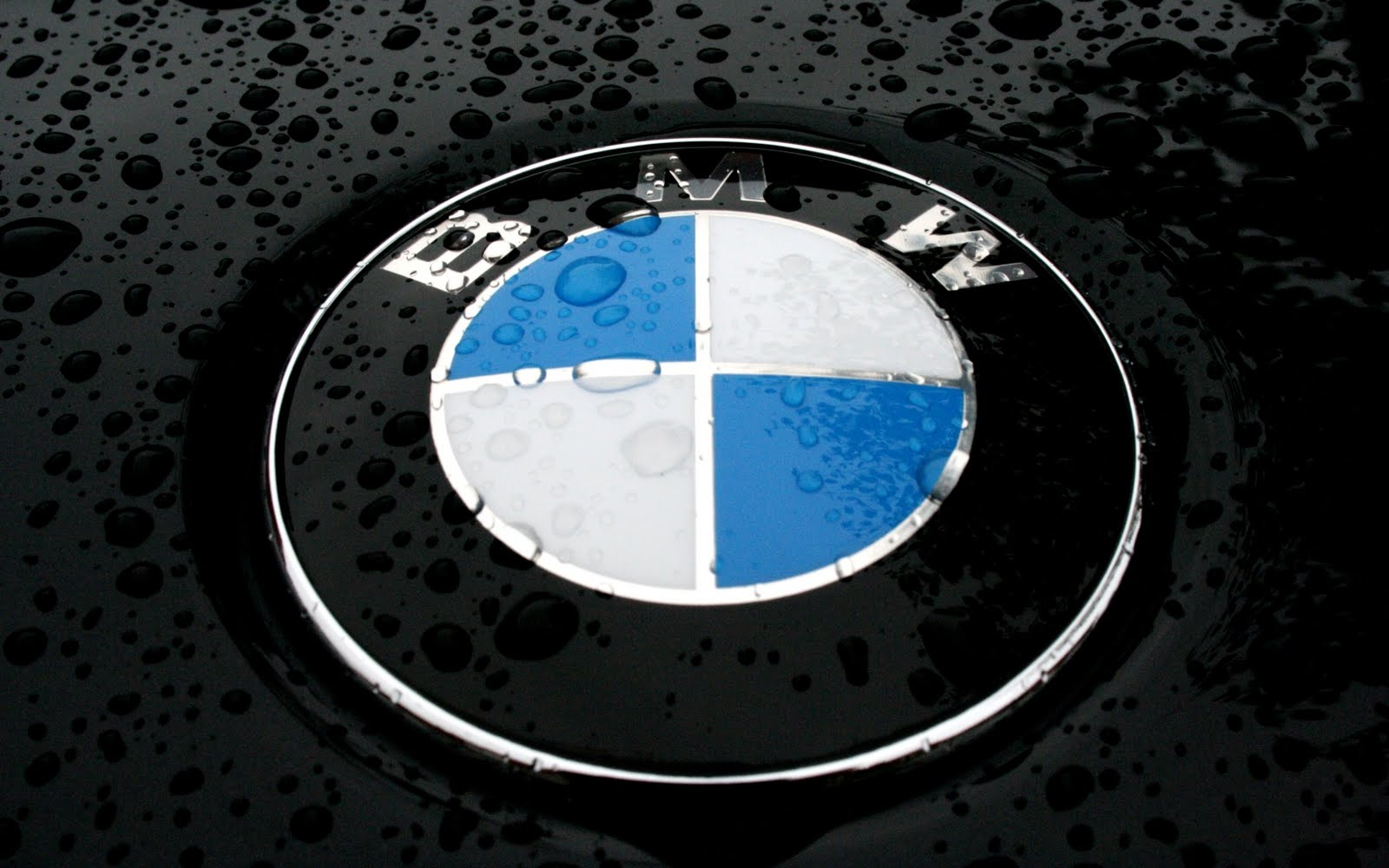 Bmw logo at the car body