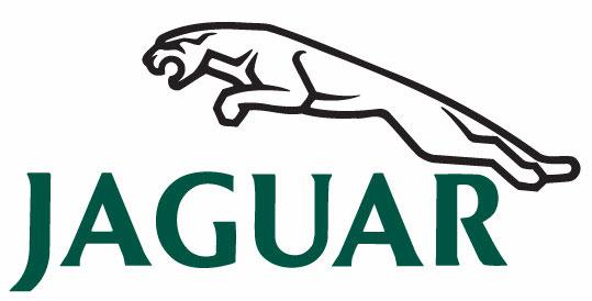 Simple grey jaguar logo
